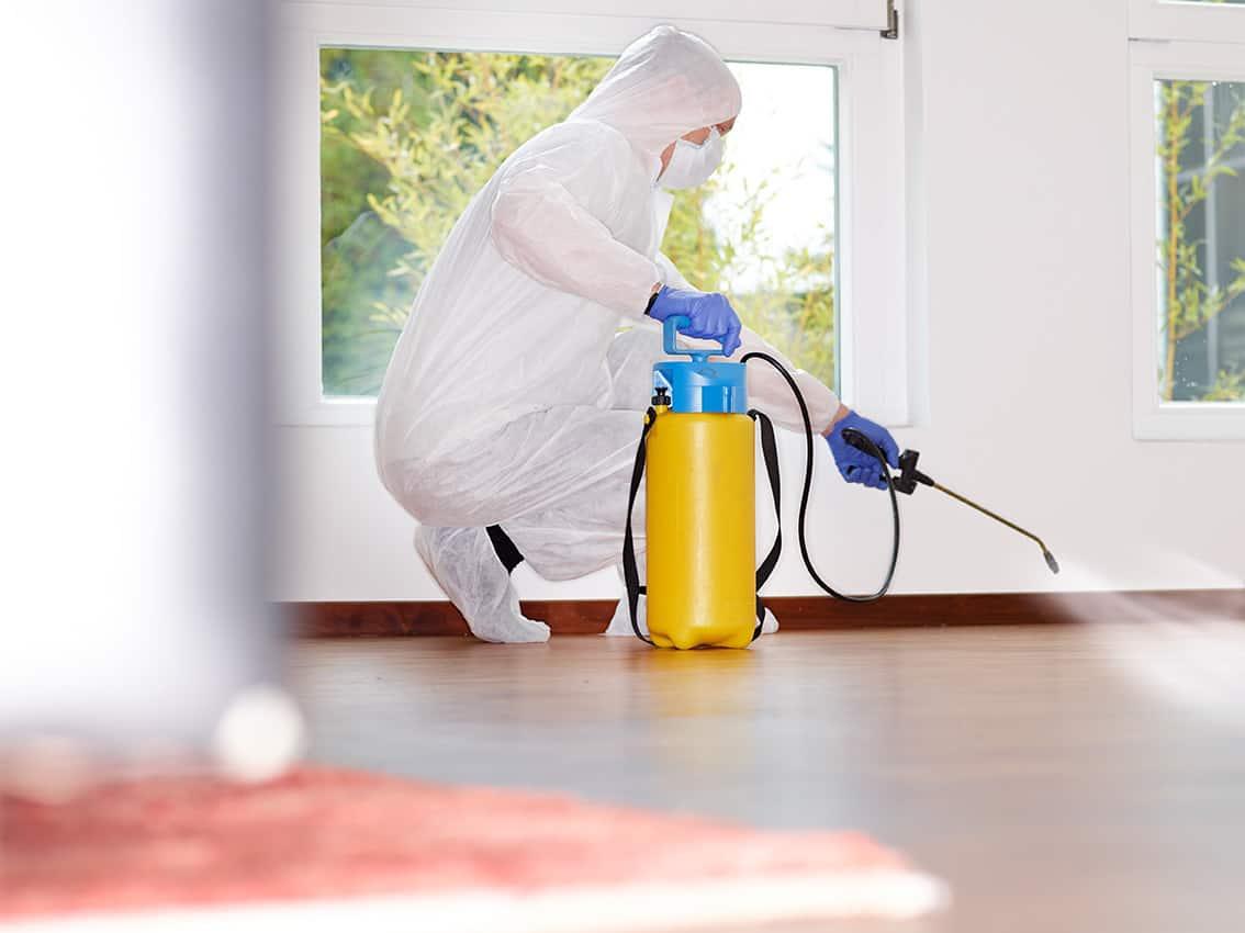 pulizia ambienti coronavirus